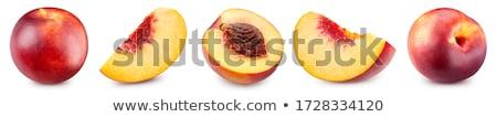 Nedves nektarin izolált víz étel gyümölcs Stock fotó © pixelman