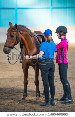 Horseriding center Stock photo © photography33