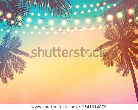 Parti plaj palmiye su dans gün batımı Stok fotoğraf © nicky2342