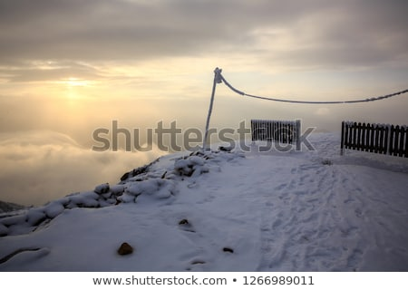 frozen snow covered path on cliff fenced walk Stock photo © morrbyte