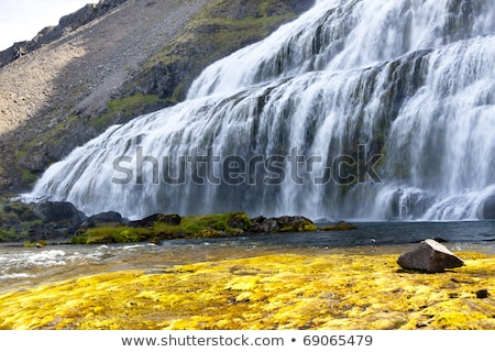 Rapid river with waterfalls - Iceland, Westfjords. Stock photo © tomasz_parys