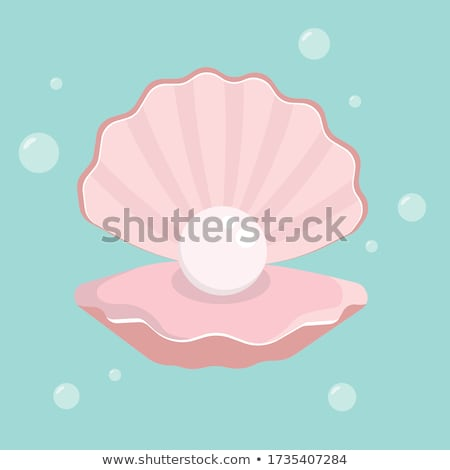 Pearls and cockleshells Stock photo © yul30