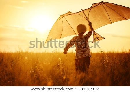 Children flying kite stock photo © mintymilk