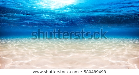 turquoise sea water and sandy beach Stock photo © sirylok