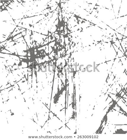 Corroded Metal grid Stock photo © stevanovicigor