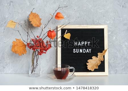 It is Sunday! Stock photo © maxmitzu