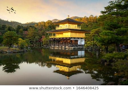 Japoński ogród słynny kyoto Japonia drzewo Zdjęcia stock © rufous
