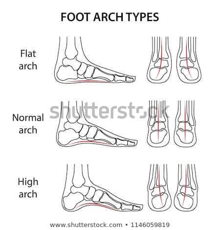 isolated feet diagram on black background stock photo © shawlinmohd
