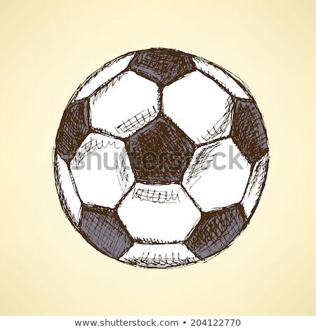 футбола · икона · различный · стиль · цвета · вектора - Сток-фото © kali