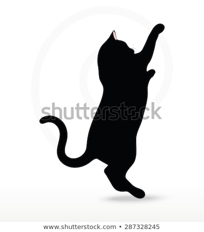 cat silhouette in Reach pose Stock photo © Istanbul2009