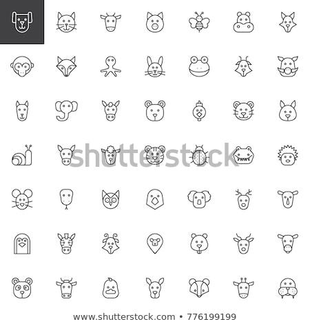 Сток-фото: свинья · голову · линия · икона · уголки · веб