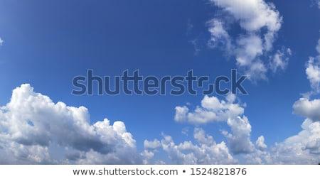 Weer donder illustratie witte achtergrond regen Stockfoto © bluering