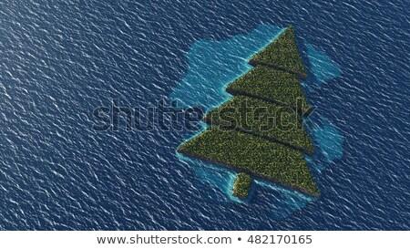 Рождества Тропический остров острове пространстве текста Сток-фото © maxmitzu