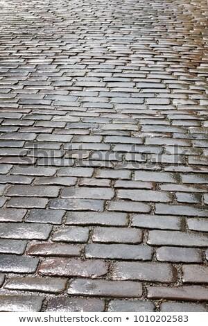 pattern of old cobble stone street in rain stock photo © meinzahn