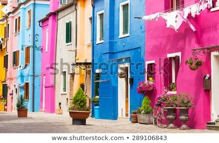 島 ヴェネツィア 明るい 色 ドア ウィンドウ ストックフォト © SergeyAndreevich