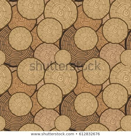 árvore · anéis · vetor · serra · cortar - foto stock © day908