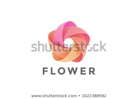 форма цветок антикварная бутик простой Сток-фото © maxmitzu