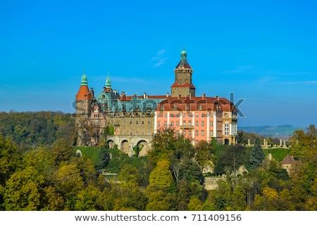 саду замок здании стены зеленый архитектура Сток-фото © Hochwander