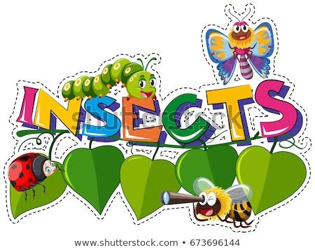 Foto stock: Palavra · insetos · muitos · folhas · ilustração · céu