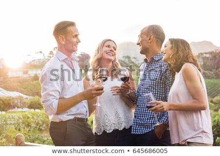 glassess of wine stock photo © user_9834712