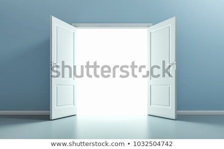 New Opportunities 3D Illustration. Stock photo © tashatuvango