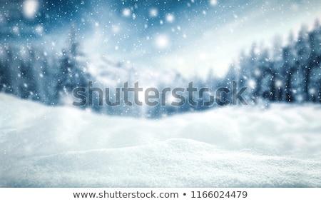 invierno · paisaje · postal · caer · nieve · ataviar - foto stock © sonya_illustrations