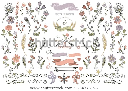 doodle color flowers and leafs collection stock photo © balasoiu