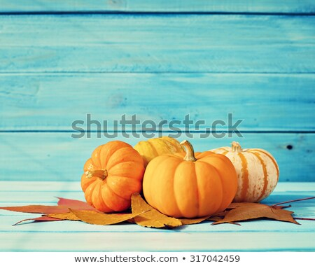 colored decorative pumpkin stock photo © lissantee
