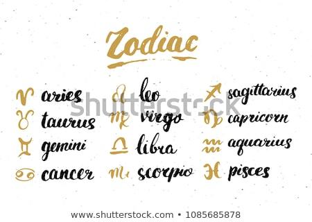 horoscope zodiac symbols stock photo © olena