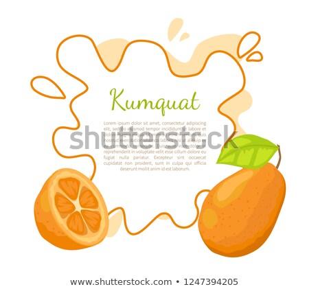 Kumquat Exotic Juicy Fruit Vector Poster Text Leaf Stock photo © robuart