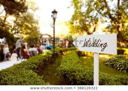 Wedding Wood Sign against the green background. Stock photo © ruslanshramko