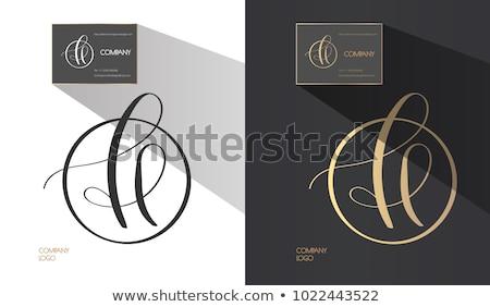 ストックフォト: サークル · アイコン · ベクトル · 手紙 · ロゴ · ロゴデザイン