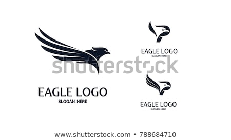 Aigle logo symbole vecteur icône signe Photo stock © blaskorizov