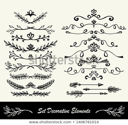 Sammlung · Blume · Blätter · Vektor · Hand · gezeichnet - stock foto © essl