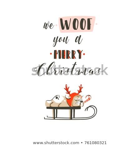 Hond kerstman vrolijk christmas tekst geïsoleerd Stockfoto © doomko
