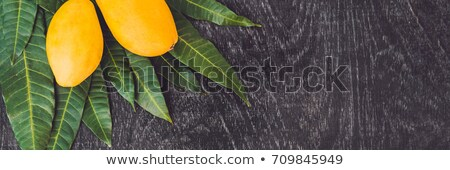 Banner mango bladeren oude houten lang Stockfoto © galitskaya