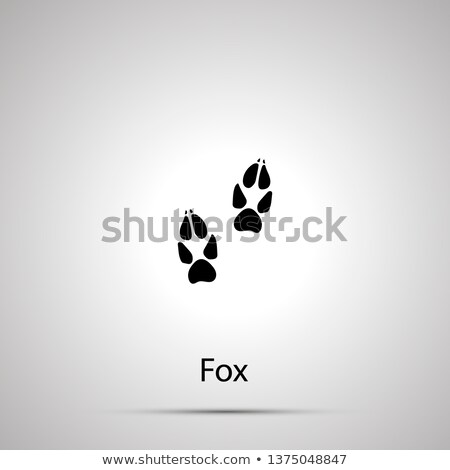 Fox pasos simple negro silueta Foto stock © evgeny89