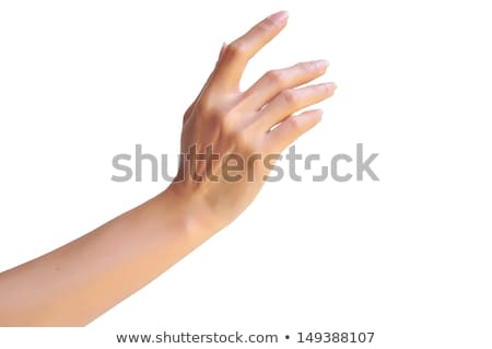 Cupped hands of a beautiful female Stock photo © get4net