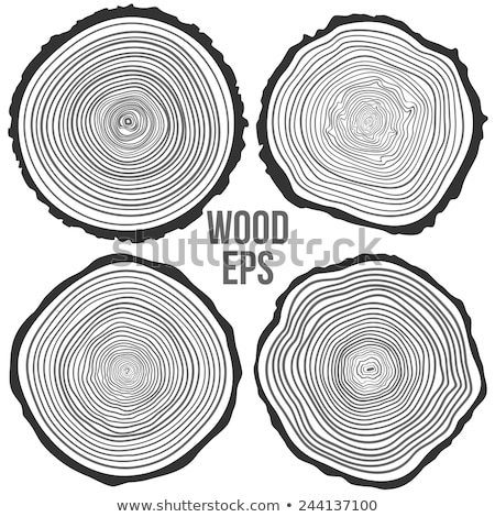 wood cut with annual rings Stock photo © prill