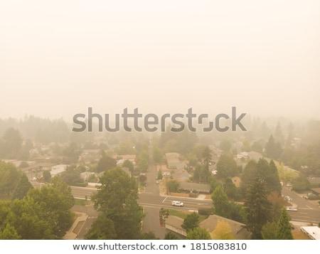 Incendios forestales humo montanas forestales árboles azul Foto stock © skylight