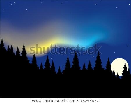 вектора Аврора лес небе пейзаж горные Сток-фото © Dahlia