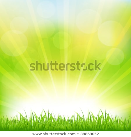 Stockfoto: Green Background With Green Grass And Sunburst