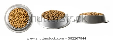 dog food isolated stock photo © ozaiachin