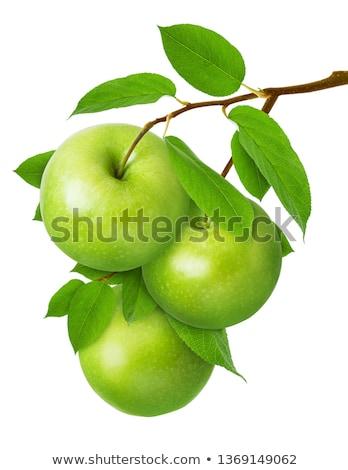 зеленый яблоко филиала дерево продовольствие лист Сток-фото © Iscatel
