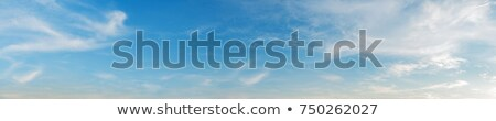 azul · nublado · céu · panorâmico · alto - foto stock © moses