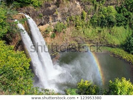 Perfeito rio céu água espaço verde Foto stock © Paha_L