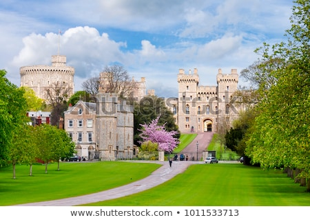 muren · kasteel · middeleeuwse · hemel · boom - stockfoto © blanaru