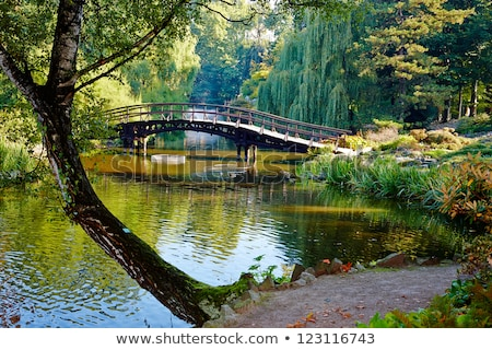 japanese garden, Wroclaw, Poland Stock photo © neirfy