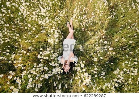 Beautiful brunette girl lying in grass. Stock photo © borysshevchuk