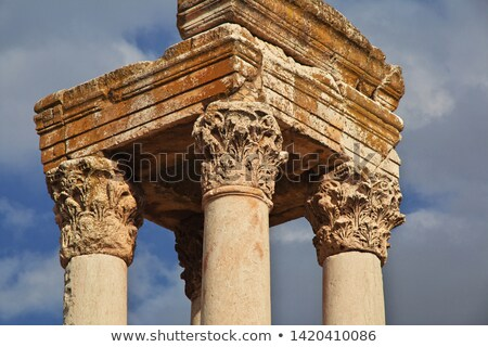 Umayyad ruins in Anjar Stock photo © benkrut